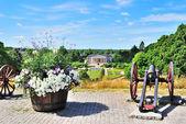 Uppsala, suecia. vista del jardín botánico — Foto de Stock