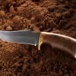 Hunting Knife — Stock Photo