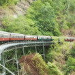 kuranda train to cairns — Stock Photo #4005067