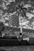 Sculpture and Skyscraper of Townsville — ストック写真