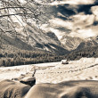 Stock Photo: Snowy Landscape of ItaliAlps on Winter