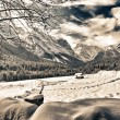 Snowy Landscape of Italian Alps on Winter - Stock Photo