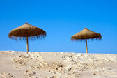 Umbrellas on the beach — Stock Photo