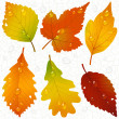 Vector de stock : Autumn leaves and seamless vein background