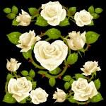 White Rose design elements — Stock Vector