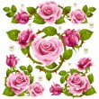 Stock Vector: Rose design elements