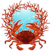 Red crab — Wektor stockowy