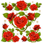 Red Rose design elements — Stock Vector