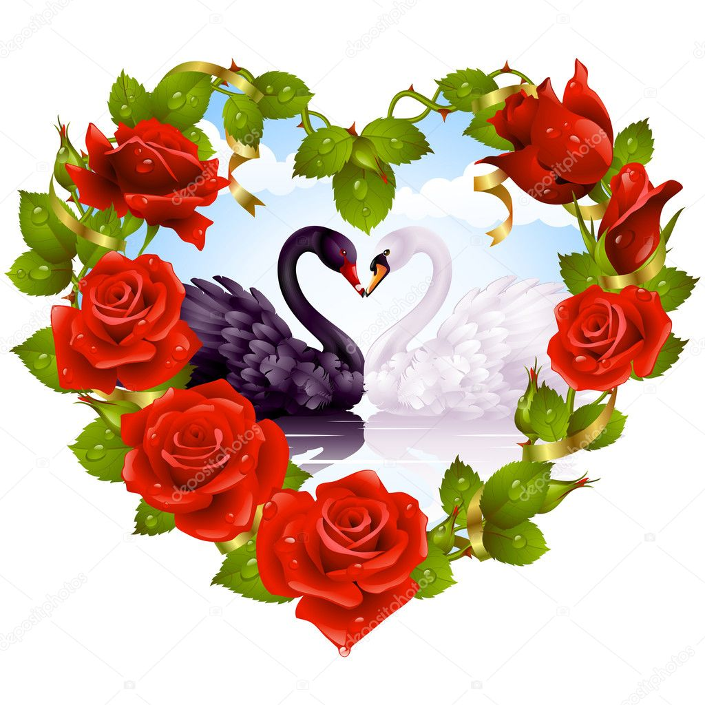 Red Rose frame in the shape of heart and couple swans — Vector by d