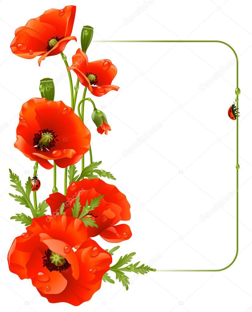 Red Rose Border Design