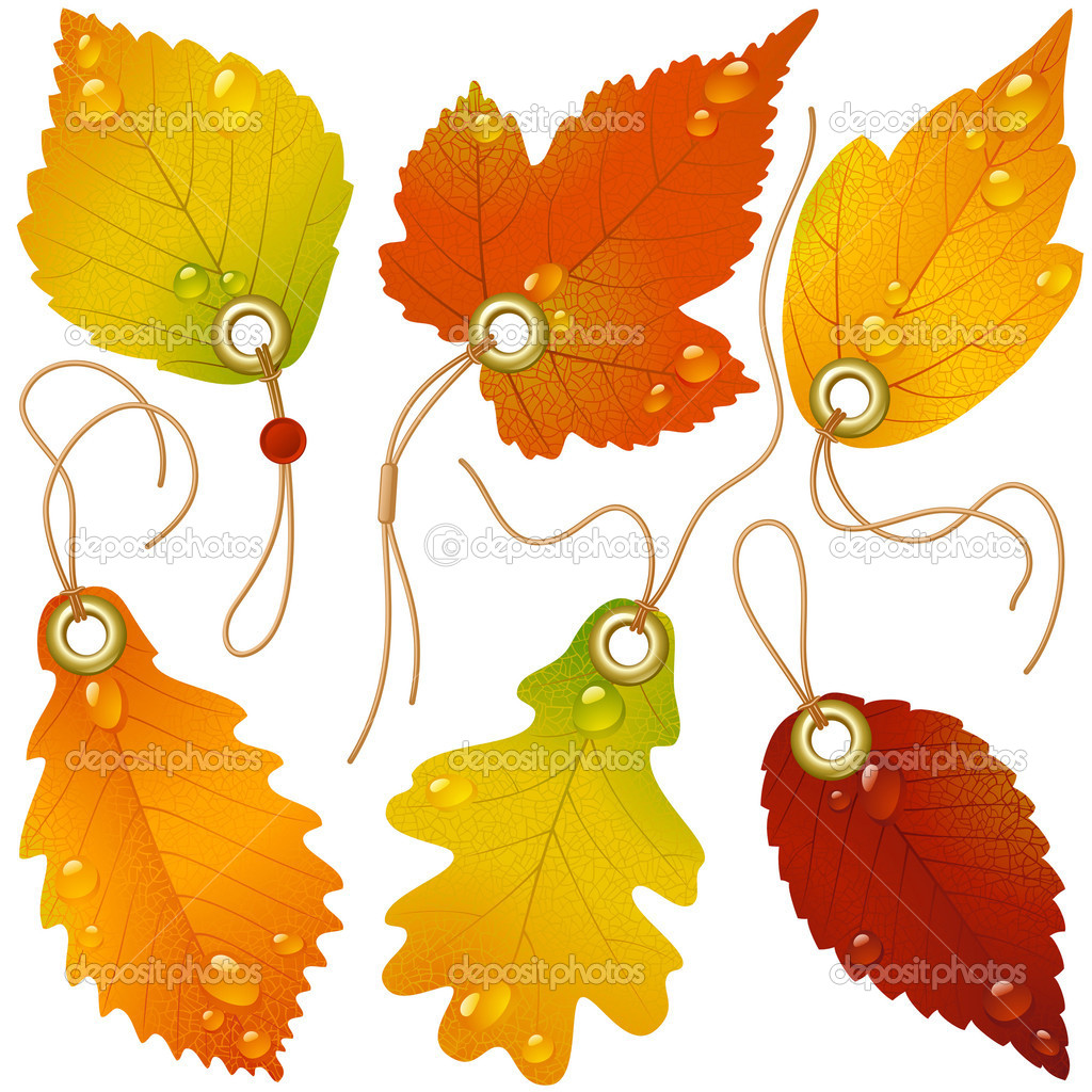 Autumnal discount. Vector fall leaves — Stock Vector #4102435