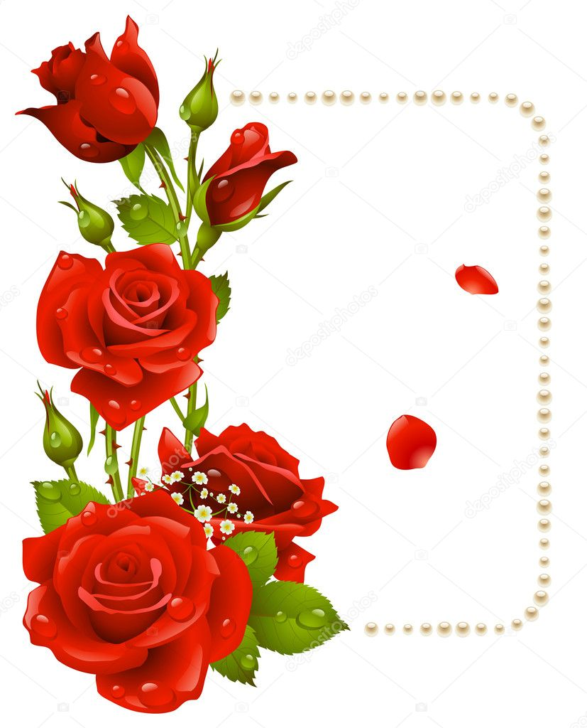 Vector red rose and pearls frame. Design element. - Stock Illustration