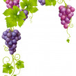 Vector grape frame 3 — Stock Vector