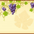 Vector grape frame — Stock Vector
