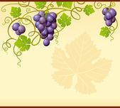 Vector grape frame — Stock Vector