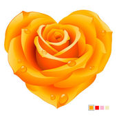 Vector orange rose in the shape of heart — Stock Vector