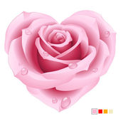 Vector pink rose in the shape of heart — Stock Vector
