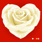 Vector white rose in the shape of heart — Stock Vector
