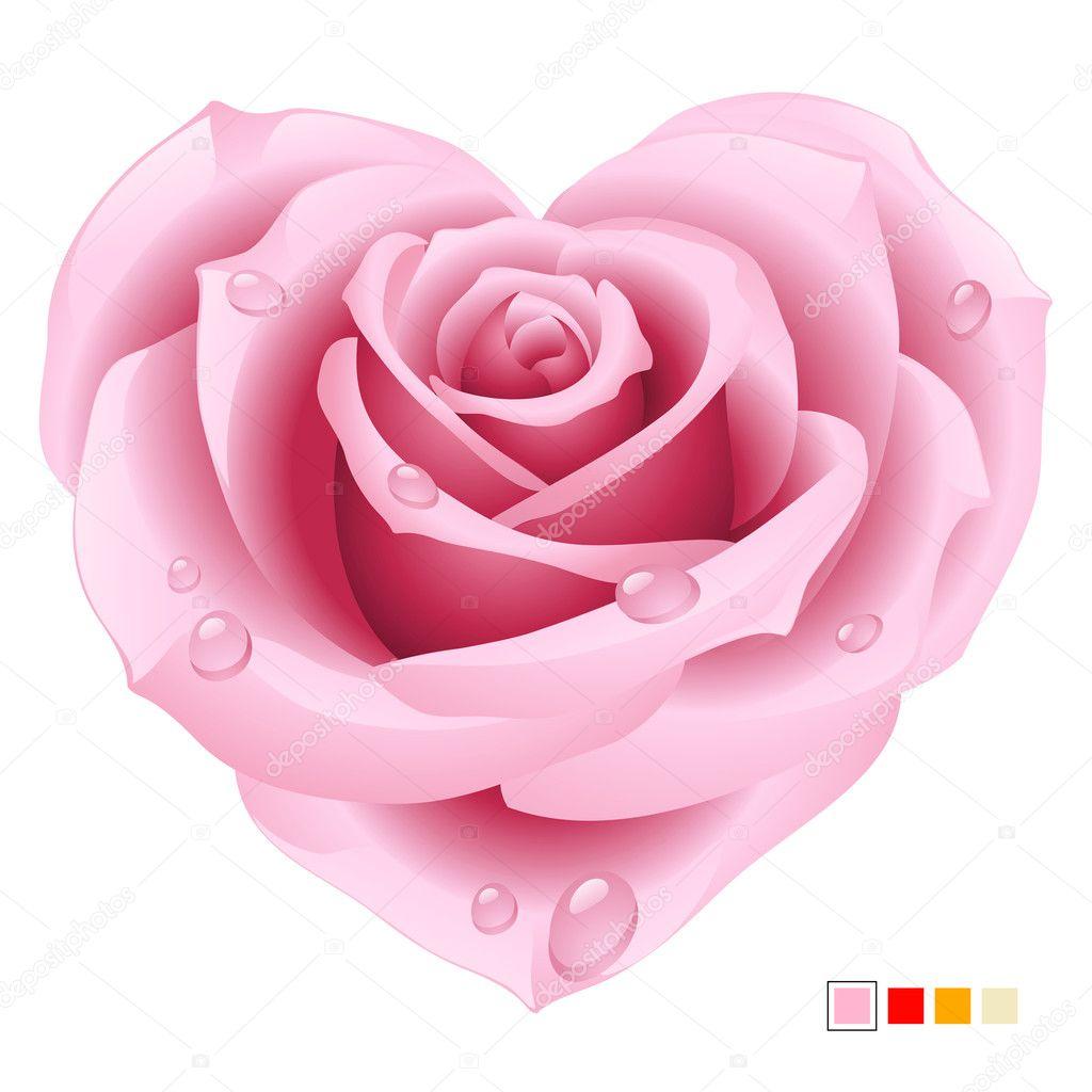Rosa rosa vettoriale a forma di cuore — Vettoriali Stock © d-e-n-i-s #4209121