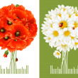 Stock Vector: Floral Greeting Cards