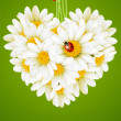 Floral love card (camomile heart) — 图库矢量图片