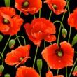 Seamless background: poppy — Vector de stock