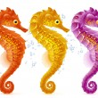 Royalty-Free Stock Vector Image: Vector sea horse