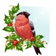 Christmas greeting card. Vector bullfinch and holly — Stock Vector