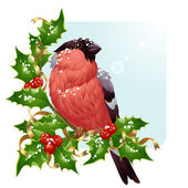Christmas greeting card. Vector bullfinch and holly — Vetor de Stock