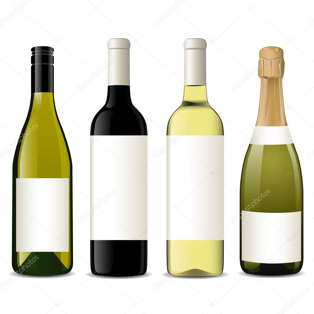 Vector illustration of different wine bottles — Stock Vector #5054101