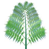 Green bush against white — Stock Vector