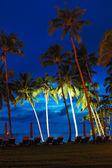 Stranden i solnedgången med belysta kokospalmer, ön koh chang — Stockfoto