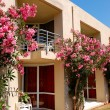 Hotel building decorated with beautiful flowers,  Crete, Greece — Stock Photo