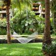 Stock Photo: Hammock at recreation areof luxury hotel, Samui island, Th