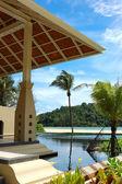 Palmy na plaży i basenie, phuket, tajlandia — Zdjęcie stockowe