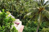 Balkon mit blumen von luxus-hotel mit blick auf die kokospalme — Stockfoto