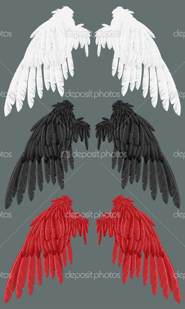 A set of angel wings are white, black, red. Illustration — Stock Vector #4107246