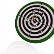 Arrows on the target — Stock Photo #5024339