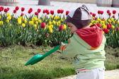 Lilla trädgårdsmästaren — Stockfoto