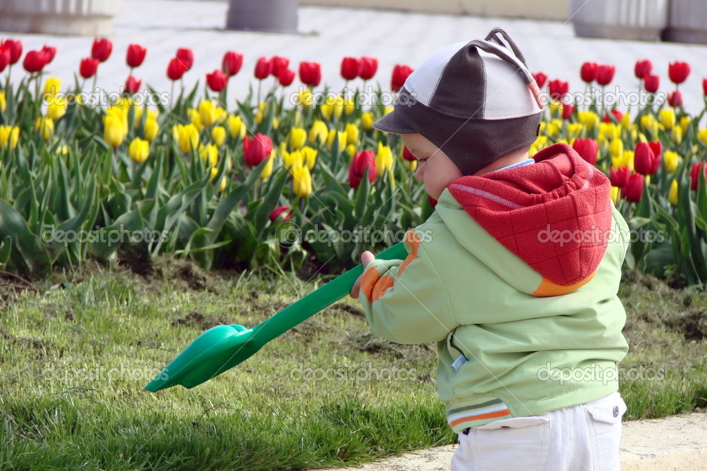 A young boy digs in the garden with a hand shovel  Stock Photo #4595939