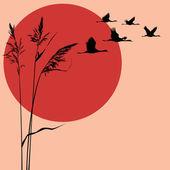 Cranes — Stock Vector
