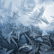 Blue frost pattern — Foto de Stock