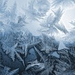 Blue frost pattern — Stockfoto