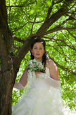 The bride at a tree — Stock Photo
