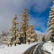 Turn of winter road — Stock Photo