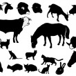 Set of domestic animals — Stock Vector