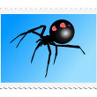 Black widow — Stock Vector