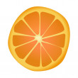 Orange slice — Stock Vector #4596691