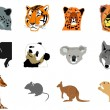 Stock Vector: Set of animals