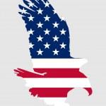 American bold eagle — Stock Photo
